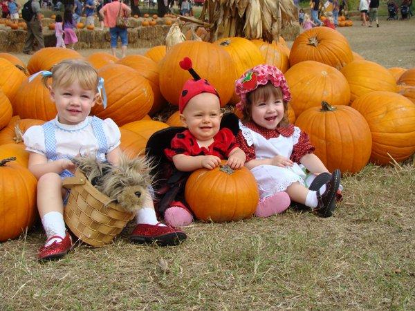 Pumpkin Patch Abilene Texas
