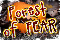 Forest of fear lawtey fl
