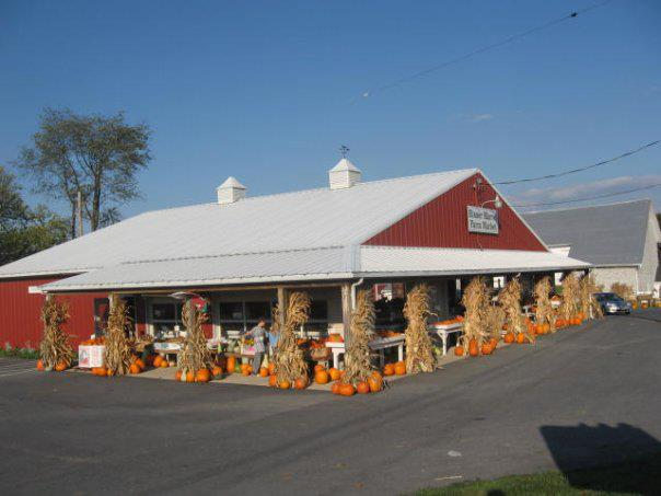 Find Corn Mazes In Annville Pennsylvania Risser Marvel Farm Market In Annville Pennsylvania
